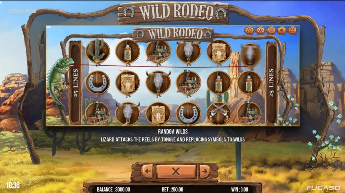 All Online Pokies - Feature Rules