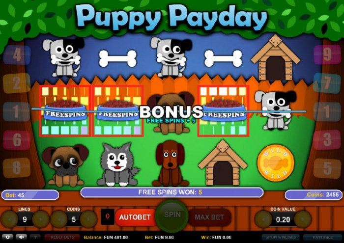 Images of Puppy Payday