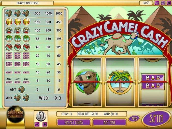 Crazy Camel Cash screenshot