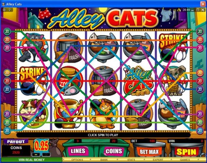 Alley Cats screenshot