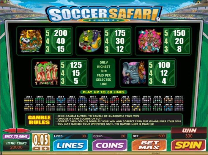 Images of Soccer Safari