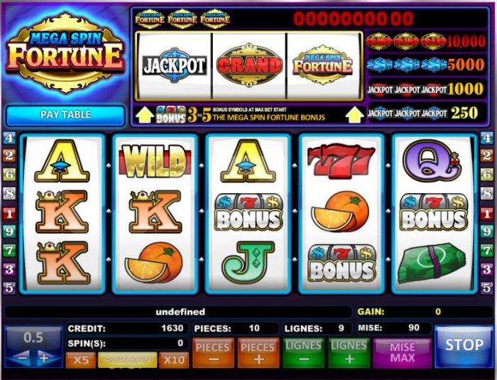 Mega Spin Fortune screenshot