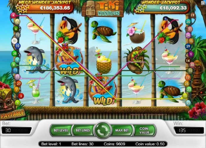 135 coin big win triggered by a couple of wild symbols by All Online Pokies